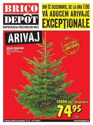 Brico Depot - catalog oferte 12.12.2014 - 24.12.2014