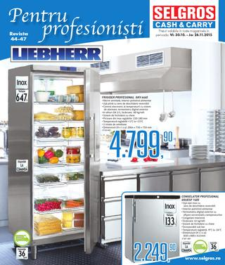 Selgros catalog Pentru profesionisti NON-FOOD  - 29 Octombrie - 26 Noiembrie 2015