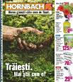 Hornbach catalog - construirea terasei - 3 mai - 6 iunie 2016