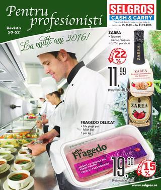 Selgros catalog Pentru profesionisti - 11-31 Decembrie 2015